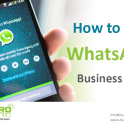how-to-use-whatsapp-business-app