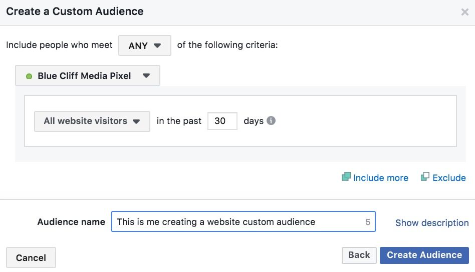 facebook-pixel-custom-audience1
