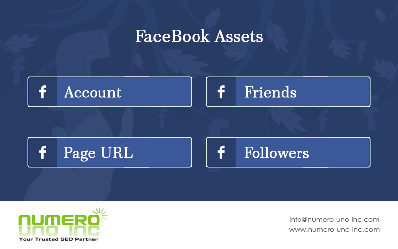 what-are-facebook-assets