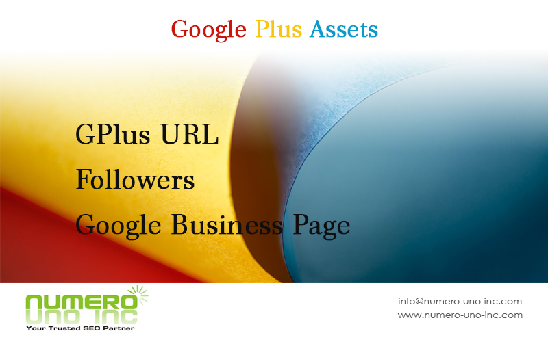what-are-google-plus-assets